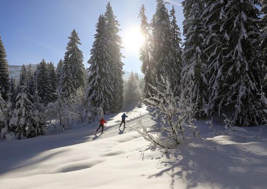 Ski de fond au Plateau de Glières
