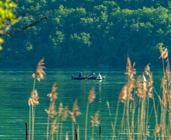 Pêche sur le lac